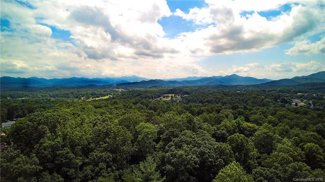 83 Challedon Drive, Candler, NC 28715 (#3416872) :: Exit Realty Vistas