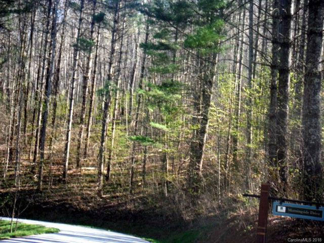 Lot 62 Morningside Drive #62, Tuckasegee, NC 28783 (#3417188) :: Exit Mountain Realty