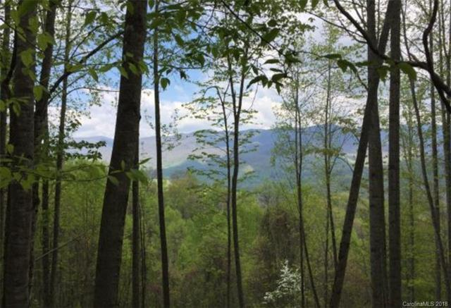 Lot 30 High Line Road, Sylva, NC 28779 (#3417375) :: Roby Realty