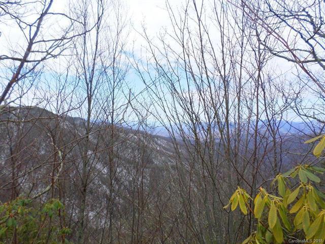 84 Spruce Top Trail #84, Qualla, NC 28719 (#3418619) :: Homes Charlotte