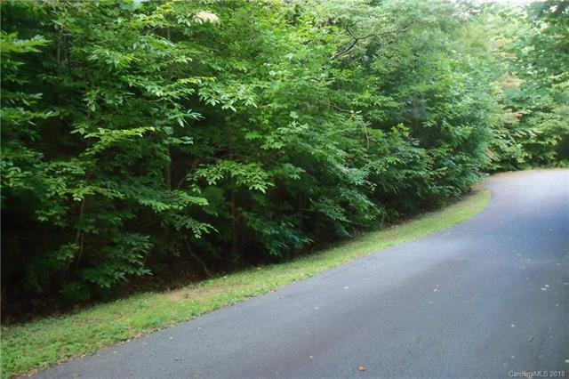 Lot 55 Turn-A-Bout Court, Waynesville, NC 28785 (#3418908) :: Zanthia Hastings Team