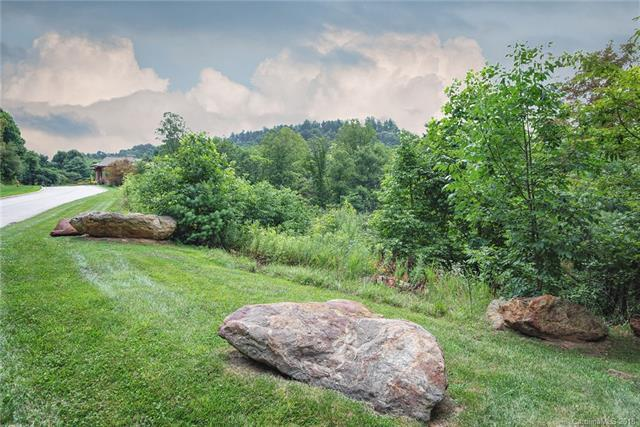 8 Green Gorge Trail #308, Asheville, NC 28804 (#3418938) :: High Performance Real Estate Advisors