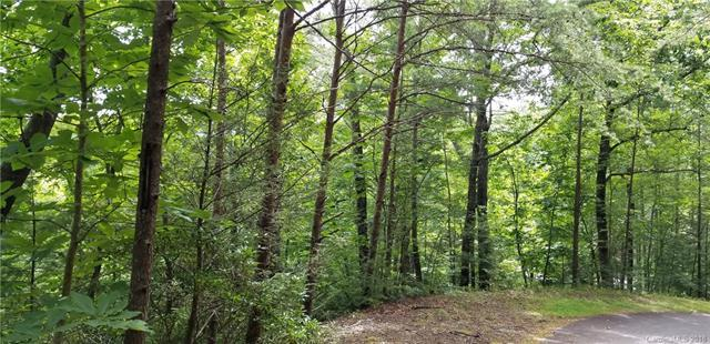 0 Watership Road Lot 54, Lake Lure, NC 28746 (#3419145) :: Stephen Cooley Real Estate Group