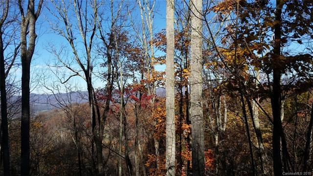 LOT 208 Glen Valley Drive #208, Mars Hill, NC 28754 (#3419337) :: Odell Realty