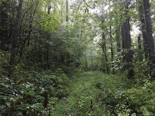 Lot 3 Spring Road #3, Hendersonville, NC 28792 (#3419348) :: Exit Mountain Realty