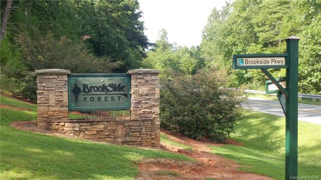 0 Brookside Parkway #40, Lake Lure, NC 28746 (#3421613) :: Puffer Properties