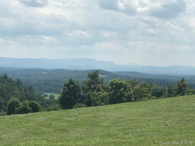Lot 6 Mckinley Drive, Hendersonville, NC 28792 (#3421886) :: LePage Johnson Realty Group, LLC