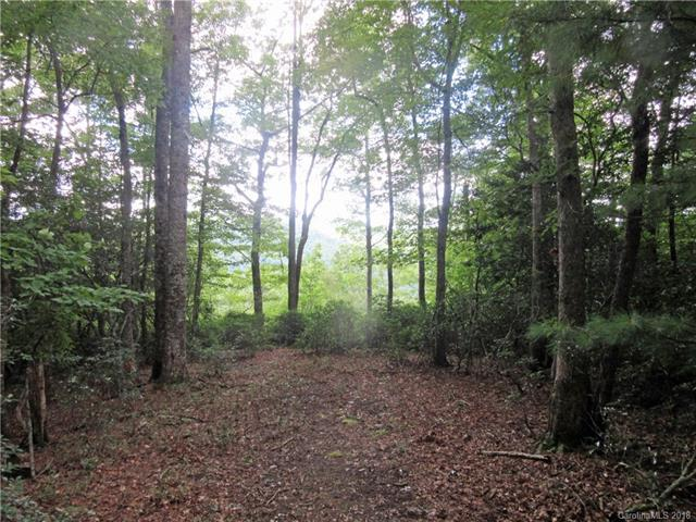 camp #7 Red Maple Lane Camp 7, Pisgah Forest, NC 28768 (#3422001) :: Odell Realty
