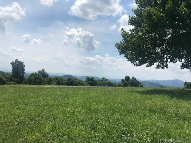 Lot 7 Mckinley Drive, Hendersonville, NC 28792 (#3422018) :: LePage Johnson Realty Group, LLC
