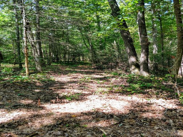 Lot 13 River Bend Drive, Mars Hill, NC 28754 (#3422057) :: Exit Mountain Realty