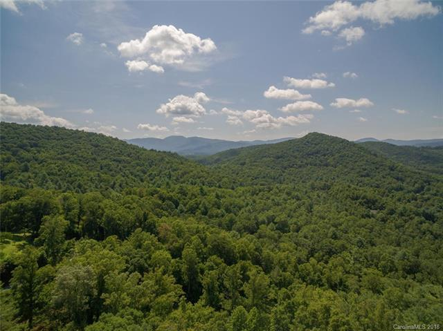 99999 Merrills Ridge Road #5, Asheville, NC 28803 (#3422157) :: Puffer Properties