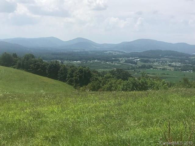 Lot 13 Mckinley Drive, Hendersonville, NC 28792 (#3422703) :: LePage Johnson Realty Group, LLC