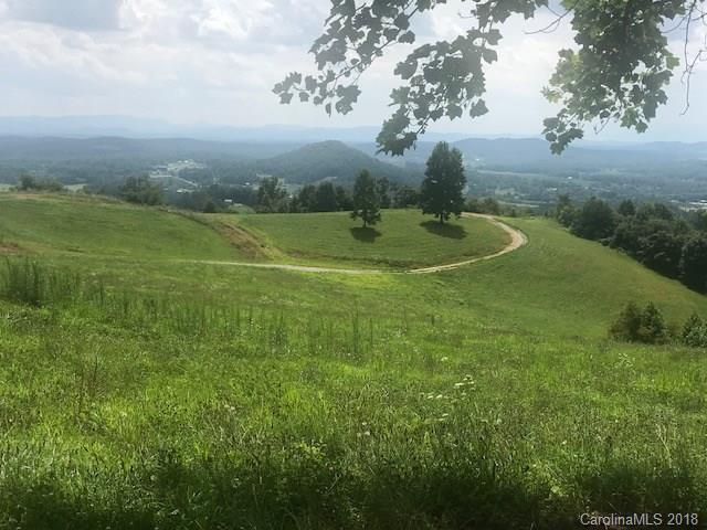 Lot 14 Mckinley Drive, Hendersonville, NC 28792 (#3422831) :: LePage Johnson Realty Group, LLC