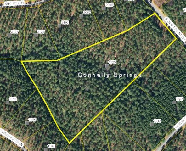 1129 Sunset Point Drive #125, Connelly Springs, NC 28612 (#3422889) :: Homes Charlotte