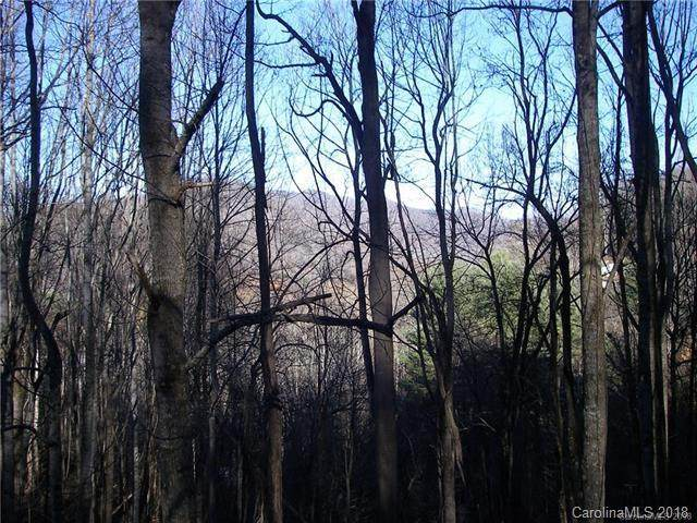 15 Spirit Mountain Trail, Maggie Valley, NC 28751 (#3423024) :: The Ordan Reider Group at Allen Tate