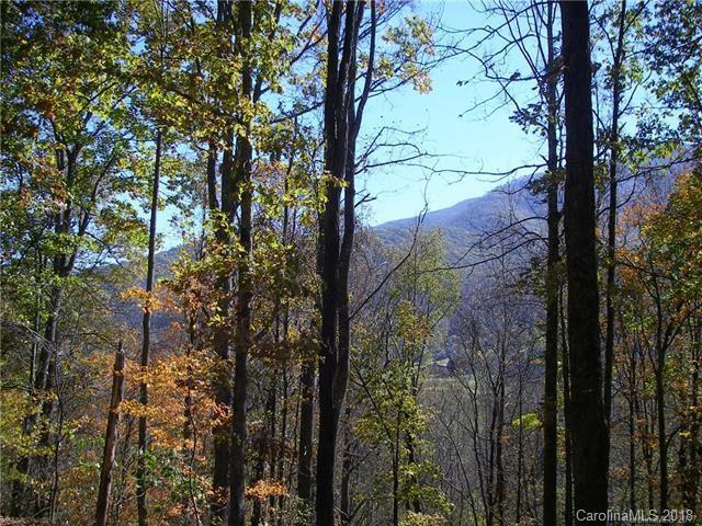 31 Fern Trail, Waynesville, NC 28786 (#3423026) :: Exit Mountain Realty