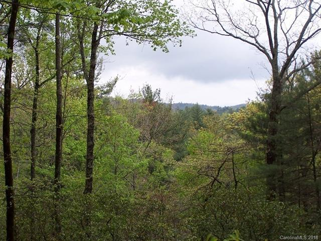 Lot 10 Deep Ford Falls Road 10REV, Lake Toxaway, NC 28747 (#3423167) :: Exit Mountain Realty