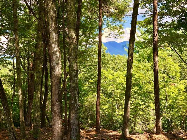 430 High Trail Drive 14-11, Nebo, NC 28761 (#3423542) :: Rinehart Realty