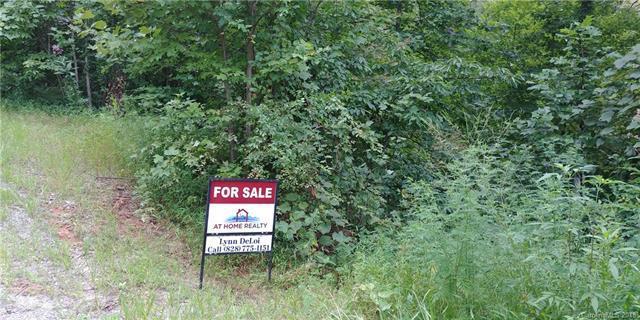 45 Blossom Ridge, Leicester, NC 28748 (#3423700) :: Phoenix Realty of the Carolinas, LLC