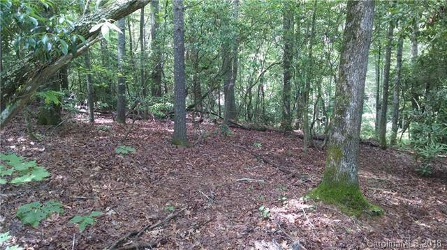 128 Willow Lake Drive, Hendersonville, NC 28739 (#3423708) :: Cloninger Properties