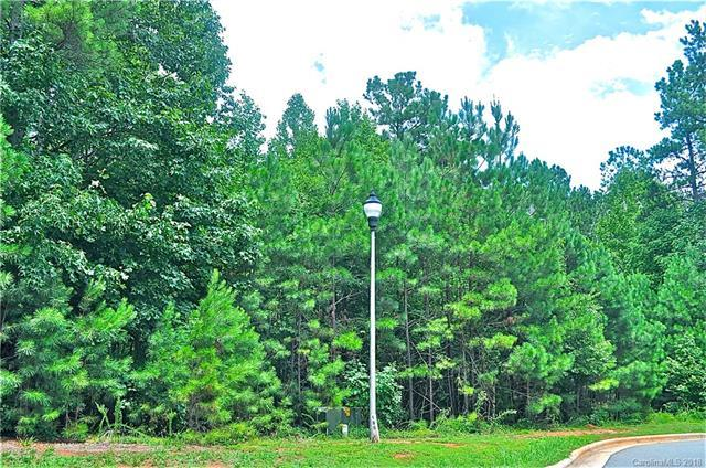 0000 Shinnville Road, Mooresville, NC 28115 (#3424264) :: The Sarver Group