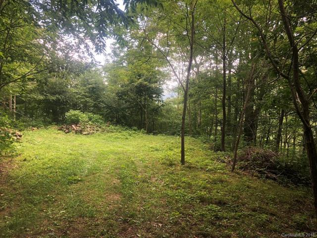 Lot 32 Minot Lane #32, Maggie Valley, NC 28751 (#3424363) :: Exit Mountain Realty