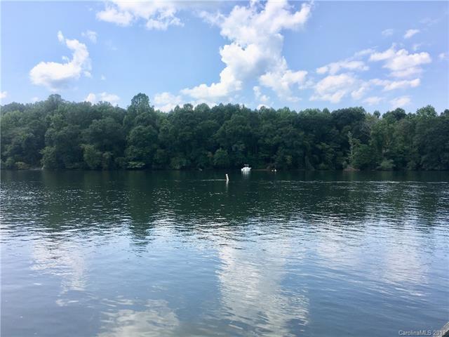 1613 Lake Drive, Charlotte, NC 28214 (#3424495) :: The Sarver Group