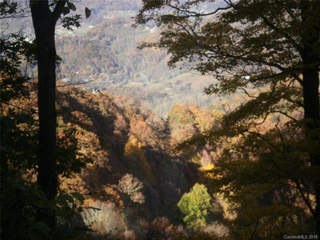 00 Echo Ridge Road, Maggie Valley, NC 28751 (#3425214) :: Phoenix Realty of the Carolinas, LLC