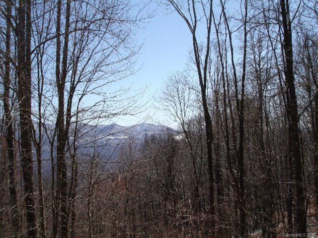 000 Orchard Lane, Sylva, NC 28779 (#3425249) :: Exit Mountain Realty