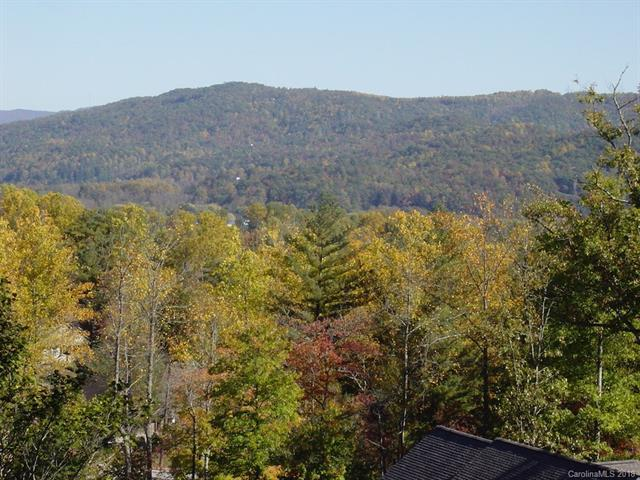M2 Pine Mountain Trail M2, Brevard, NC 28712 (#3425267) :: RE/MAX RESULTS