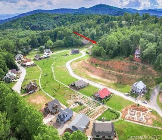 99999 Destination Drive, Woodfin, NC 28806 (#3425764) :: Exit Mountain Realty