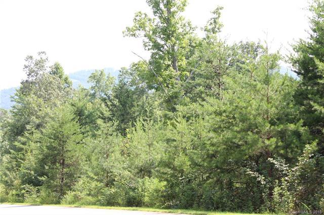 Lot 11 Brookside Parkway #11, Lake Lure, NC 28746 (#3425910) :: Puffer Properties