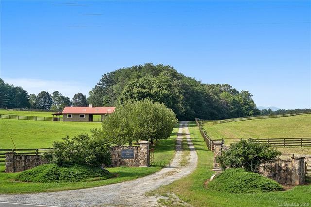 5911 Big Level Road N/A, Mill Spring, NC 28756 (#3426146) :: Homes Charlotte
