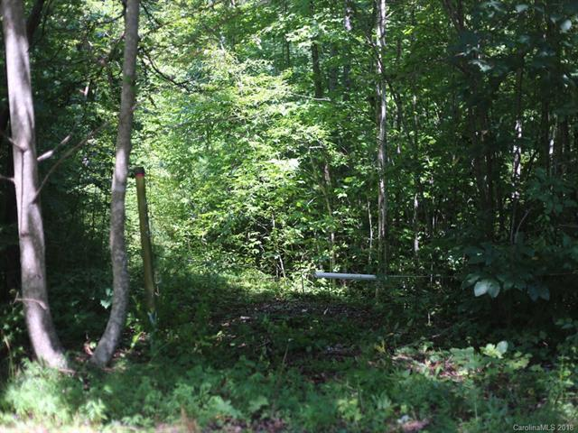 10 Staton Ridge Road, Saluda, NC 28773 (#3426238) :: Exit Mountain Realty