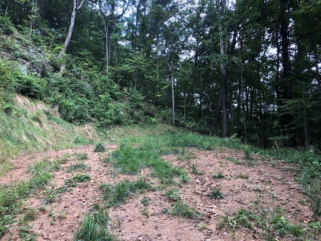 360 Grand Oak Trail, Waynesville, NC 28785 (#3426544) :: Rinehart Realty