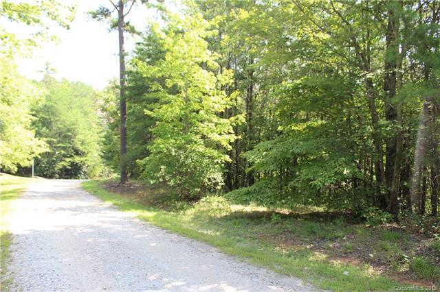000 Whippoorwill Lane, Mill Spring, NC 28756 (#3427069) :: LePage Johnson Realty Group, LLC
