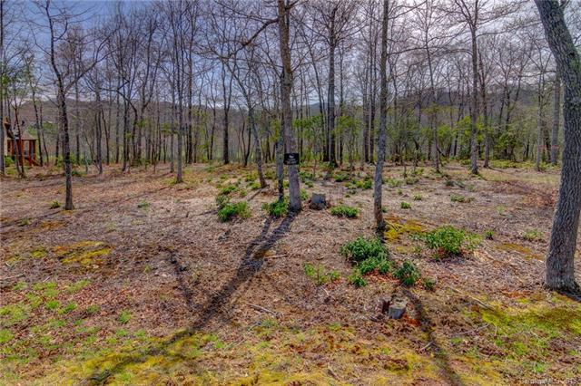 348 Walnut Valley Parkway Lot 227, Arden, NC 28704 (#3427942) :: The Ann Rudd Group