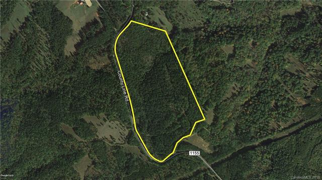 42.36 Ac County Line Road Tract 2, Rutherfordton, NC 28139 (#3429464) :: LePage Johnson Realty Group, LLC