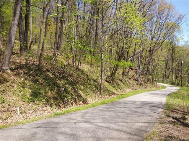 811 Dogwood Trail, Waynesville, NC 28786 (#3429603) :: RE/MAX Four Seasons Realty