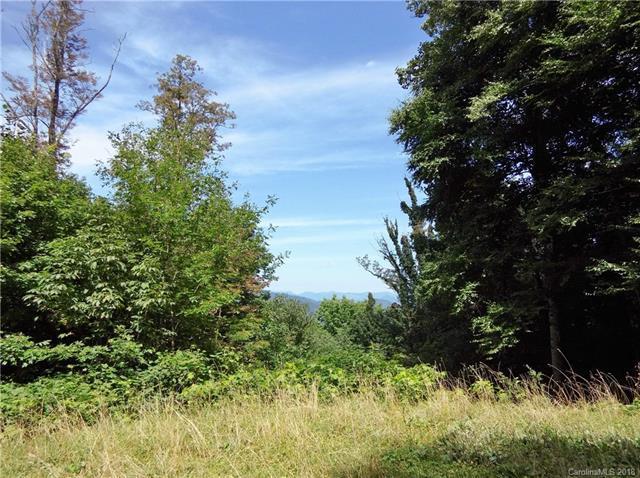 Lot 232 Tannehill Lane, Waynesville, NC 28786 (#3429724) :: Rinehart Realty
