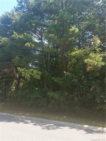 3811 Cherrybrook Drive, Mint Hill, NC 28227 (#3429966) :: Rowena Patton's All-Star Powerhouse