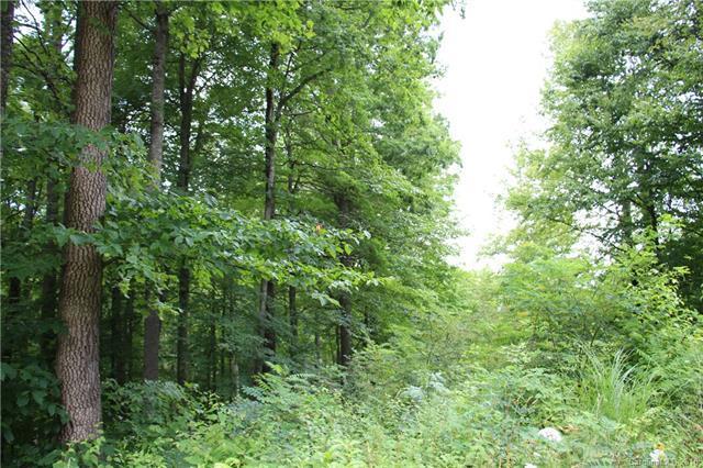 TBD Little Pond Pass #29, Mars Hill, NC 28754 (#3430159) :: Puffer Properties