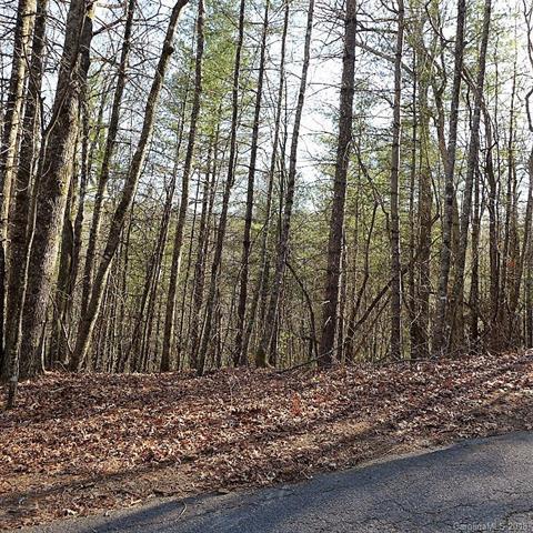 A6-8 Cardinal Road A6-8, Brevard, NC 28712 (#3430223) :: Puffer Properties