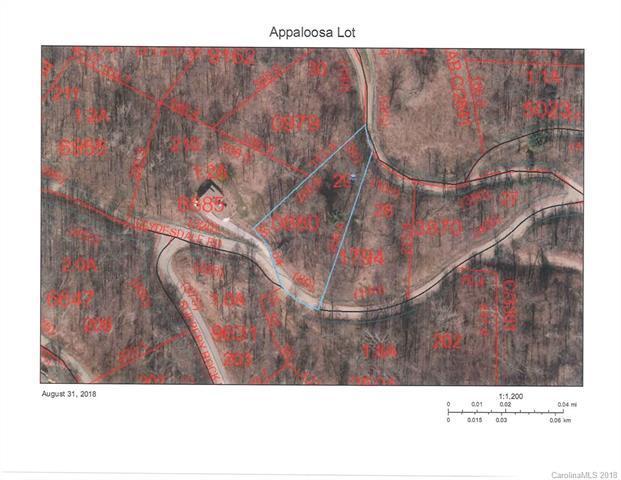 0 Appaloosa Trail, Waynesville, NC 28785 (#3430284) :: High Performance Real Estate Advisors