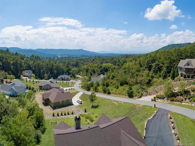 56 Hawtree Court #253, Weaverville, NC 28787 (#3430981) :: Puffer Properties