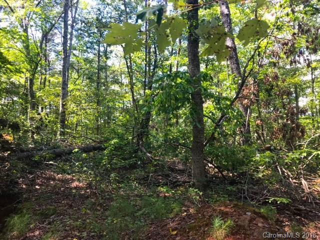 Lot 14 Stayman Court #14, Lake Lure, NC 28746 (#3431433) :: Caulder Realty and Land Co.