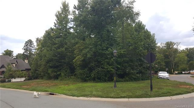 Lot #118 Skye Lochs Drive #118, Waxhaw, NC 28173 (#3432505) :: High Performance Real Estate Advisors