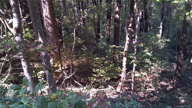 000 Hogback Mountain Road #63, Tryon, NC 28782 (#3432684) :: Puffer Properties