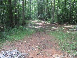 00 Ashland Mountain Road - Photo 1