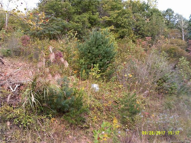 00 Waters Edge Lane 26,27,28, Marshall, NC 28753 (#3433180) :: Miller Realty Group